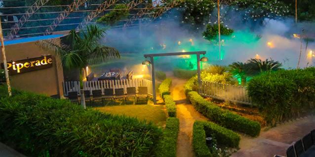 Piperade night view